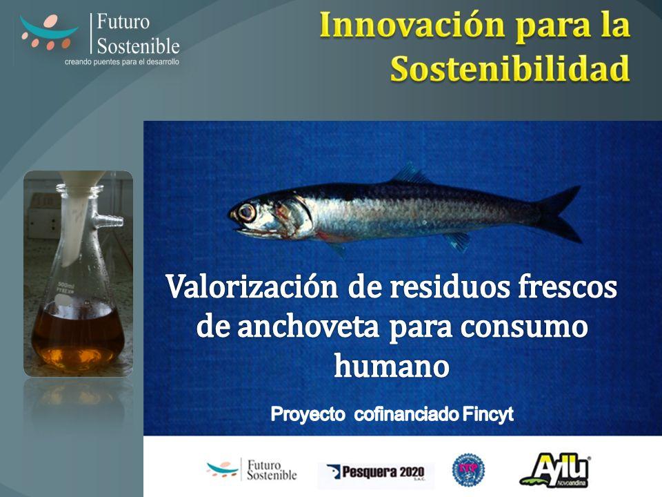Innovación para la Sostenibilidad