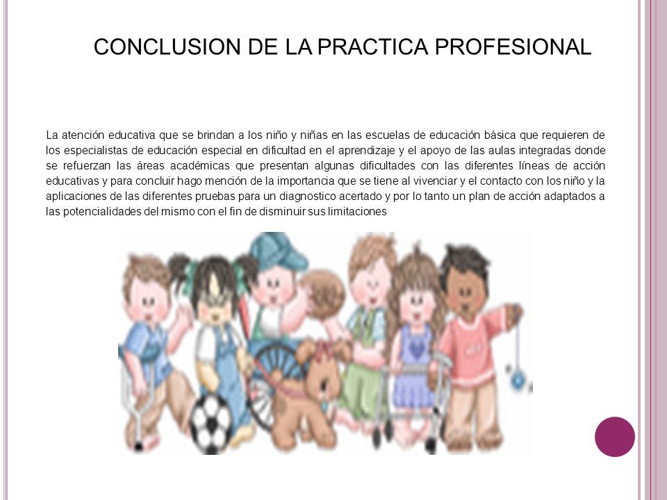 CONCLUSION DE LA PRACTICA PROFESIONAL