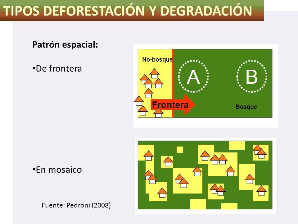TIPOS DEFORESTACIÓN Y DEGRADACIÓN