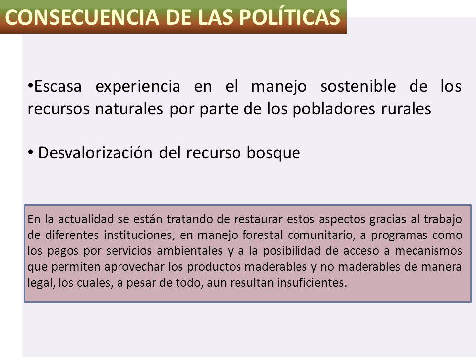 CONSECUENCIA DE LAS POLÍTICAS