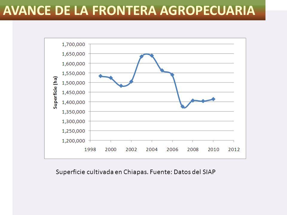 AVANCE DE LA FRONTERA AGROPECUARIA