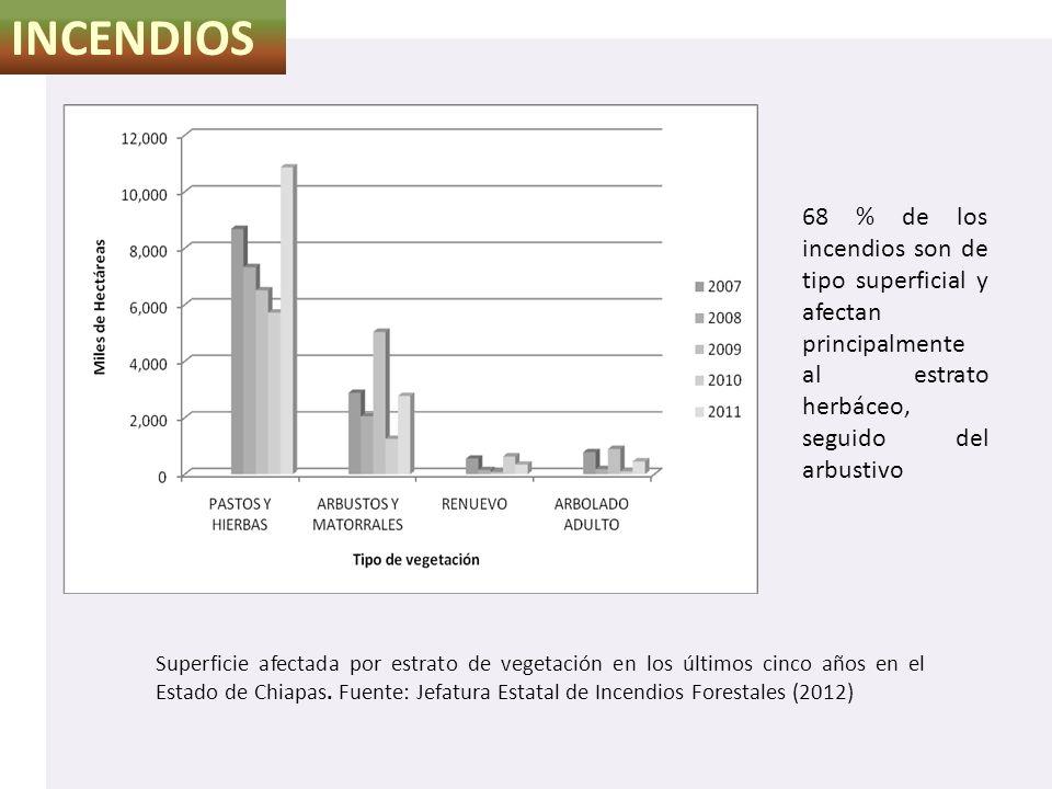 INCENDIOS 68 % de los incendios son de tipo superficial y afectan principalmente al estrato herbáceo, seguido del arbustivo.