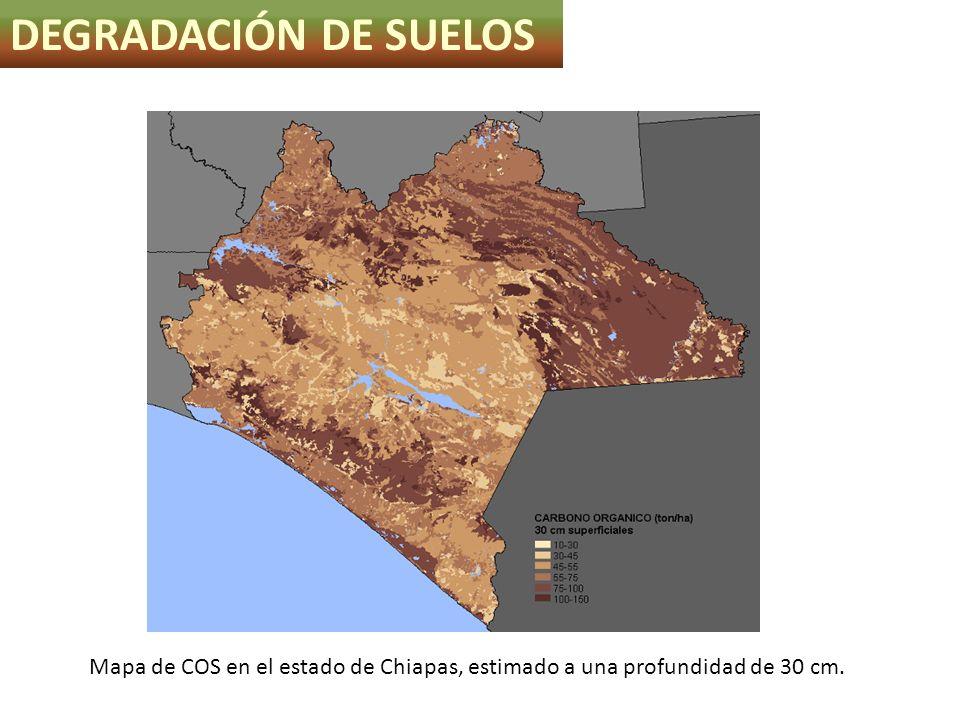 DEGRADACIÓN DE SUELOS Mapa de COS en el estado de Chiapas, estimado a una profundidad de 30 cm.