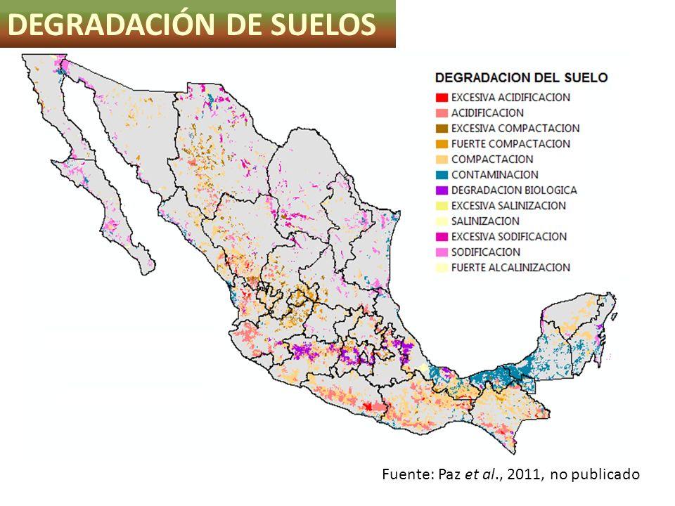 DEGRADACIÓN DE SUELOS Fuente: Paz et al., 2011, no publicado