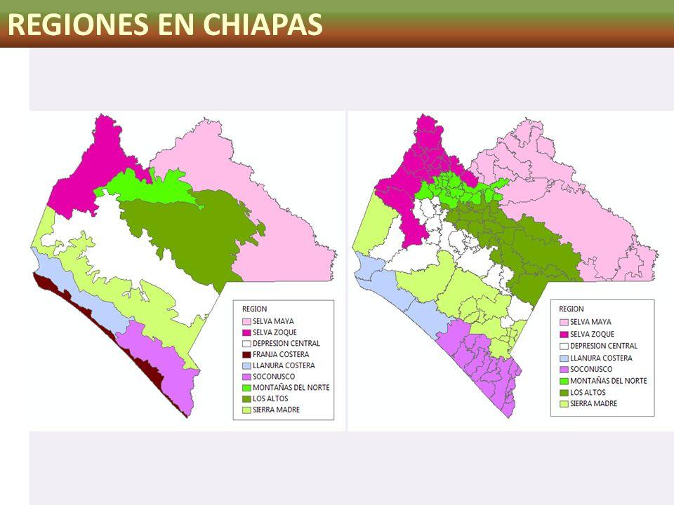 REGIONES EN CHIAPAS