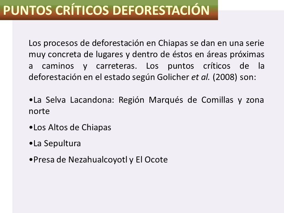 PUNTOS CRÍTICOS DEFORESTACIÓN