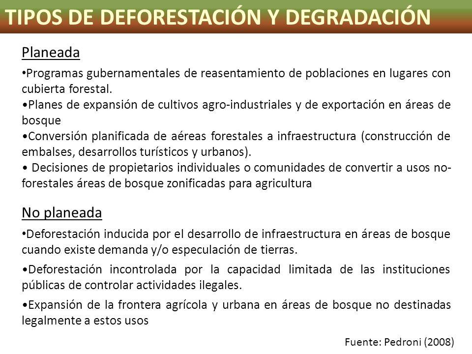 TIPOS DE DEFORESTACIÓN Y DEGRADACIÓN