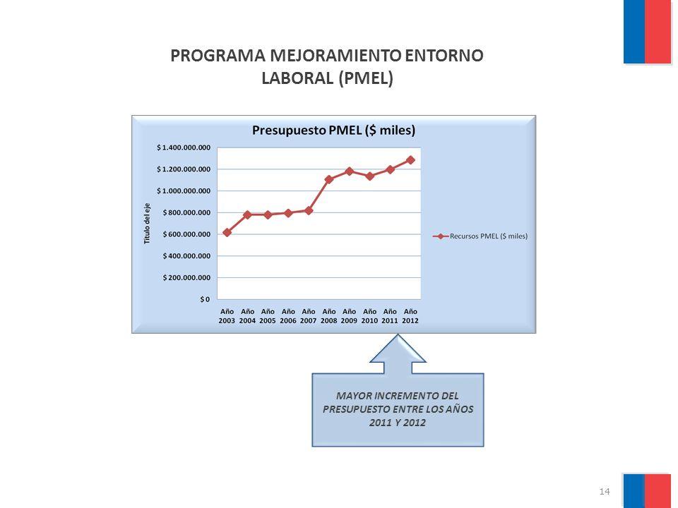 PROGRAMA MEJORAMIENTO ENTORNO LABORAL (PMEL)