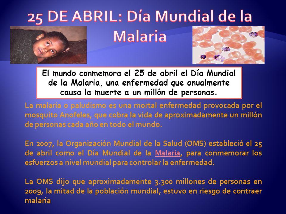 25 DE ABRIL: Día Mundial de la Malaria