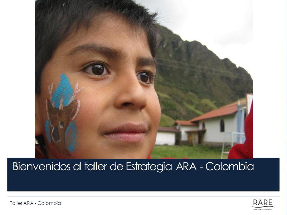 Bienvenidos al taller de Estrategia ARA - Colombia