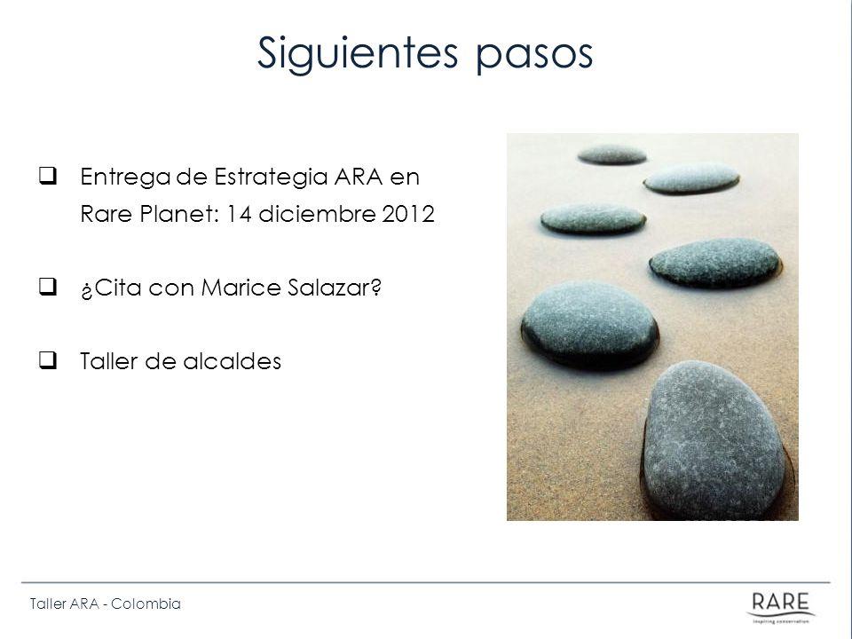Siguientes pasos Entrega de Estrategia ARA en Rare Planet: 14 diciembre 2012. ¿Cita con Marice Salazar