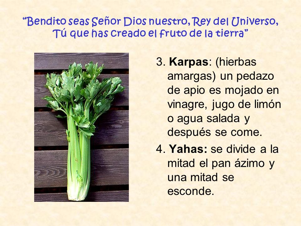 4. Yahas: se divide a la mitad el pan ázimo y una mitad se esconde.