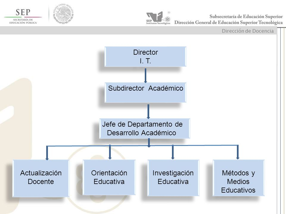 Subdirector Académico