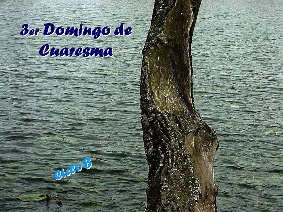 3er Domingo de Cuaresma Ciclo B