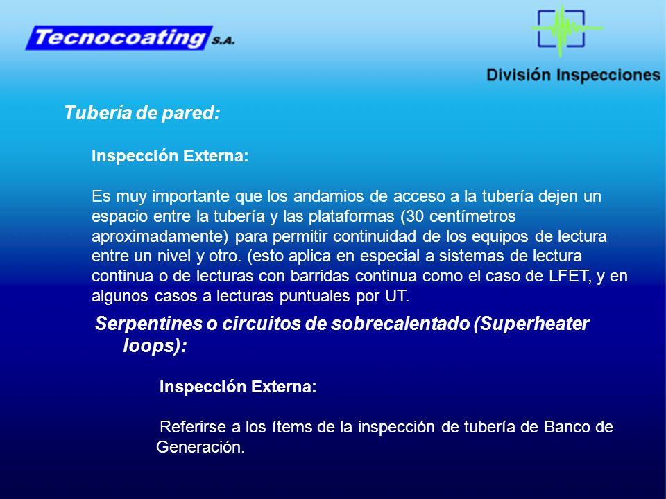 Serpentines o circuitos de sobrecalentado (Superheater loops):