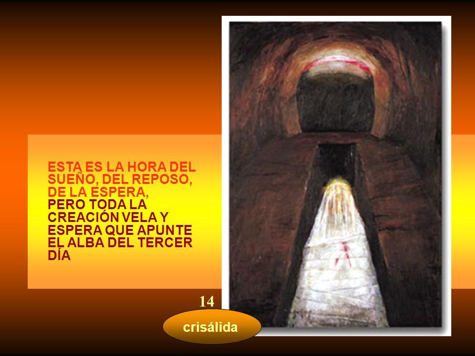 14 ESTA ES LA HORA DEL SUEÑO, DEL REPOSO, DE LA ESPERA,