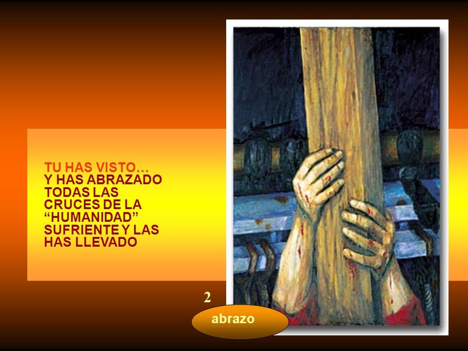 TU HAS VISTO… Y HAS ABRAZADO TODAS LAS CRUCES DE LA HUMANIDAD SUFRIENTE Y LAS HAS LLEVADO.