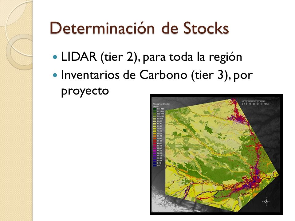 Determinación de Stocks