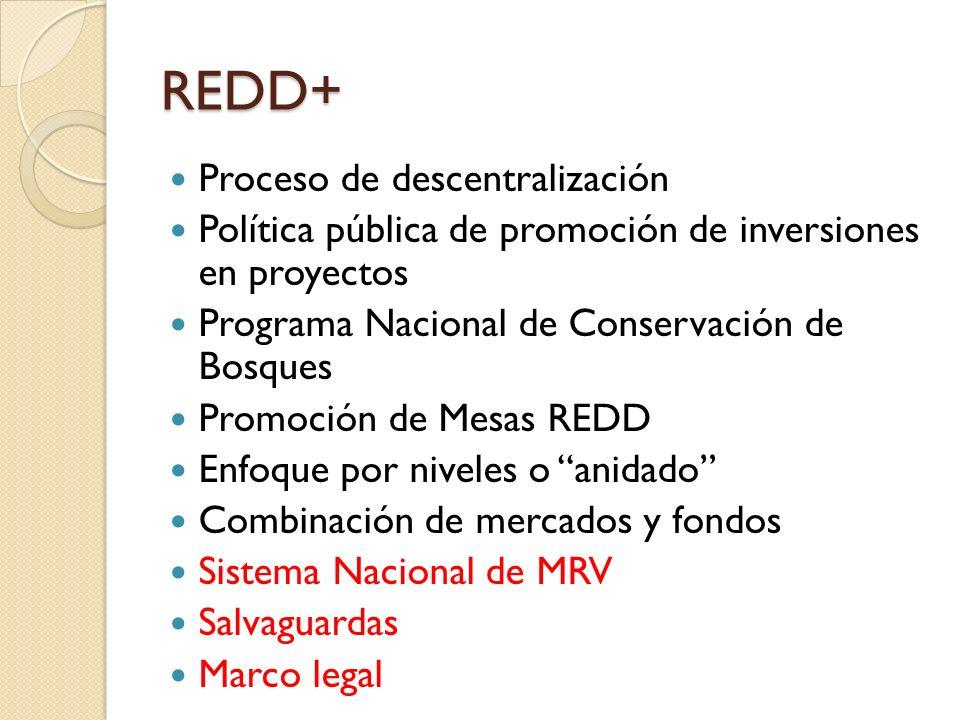 REDD+ Proceso de descentralización
