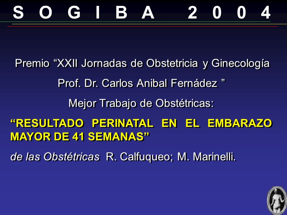 S O G I B A 2 0 0 4 Prof. Dr. Carlos Anibal Fernádez