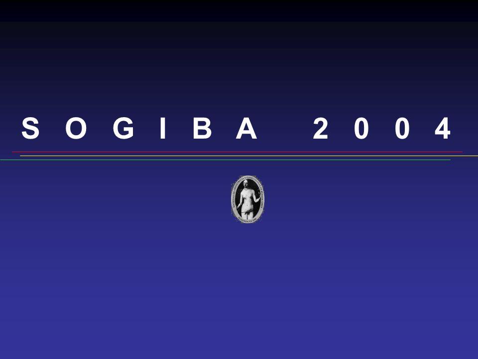 S O G I B A 2 0 0 4