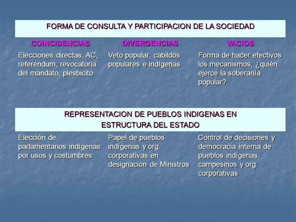 COINCIDENCIAS DIVERGENCIAS VACIOS