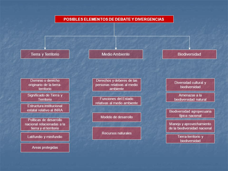 POSIBLES ELEMENTOS DE DEBATE Y DIVERGENCIAS