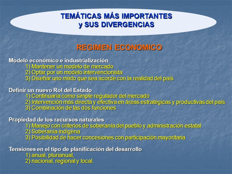 TEMÁTICAS MÁS IMPORTANTES y SUS DIVERGENCIAS