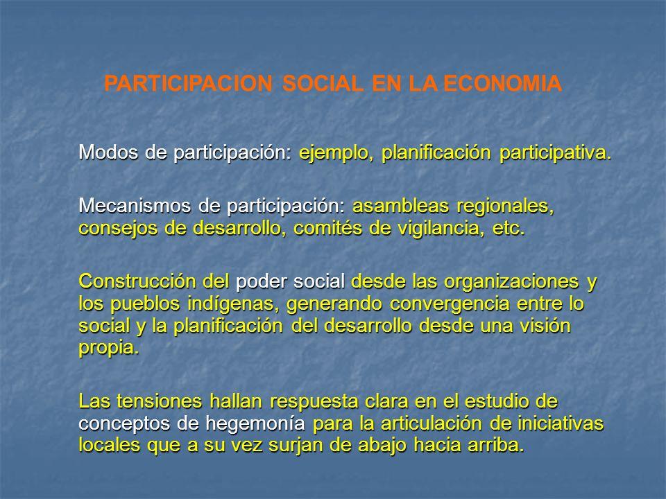 PARTICIPACION SOCIAL EN LA ECONOMIA