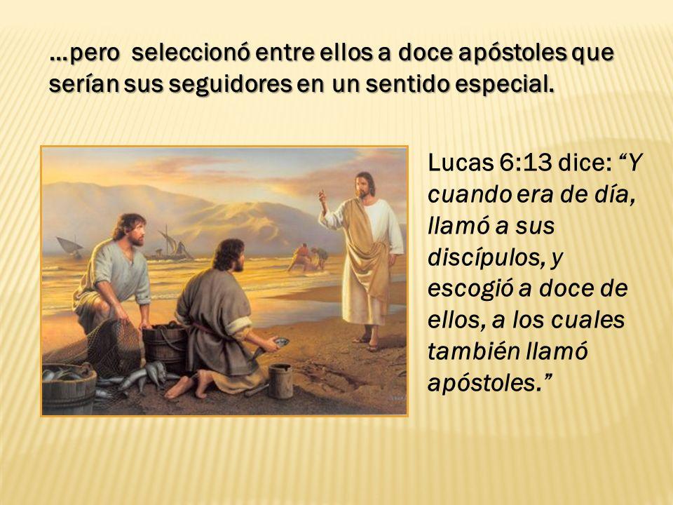 …pero seleccionó entre ellos a doce apóstoles que serían sus seguidores en un sentido especial.