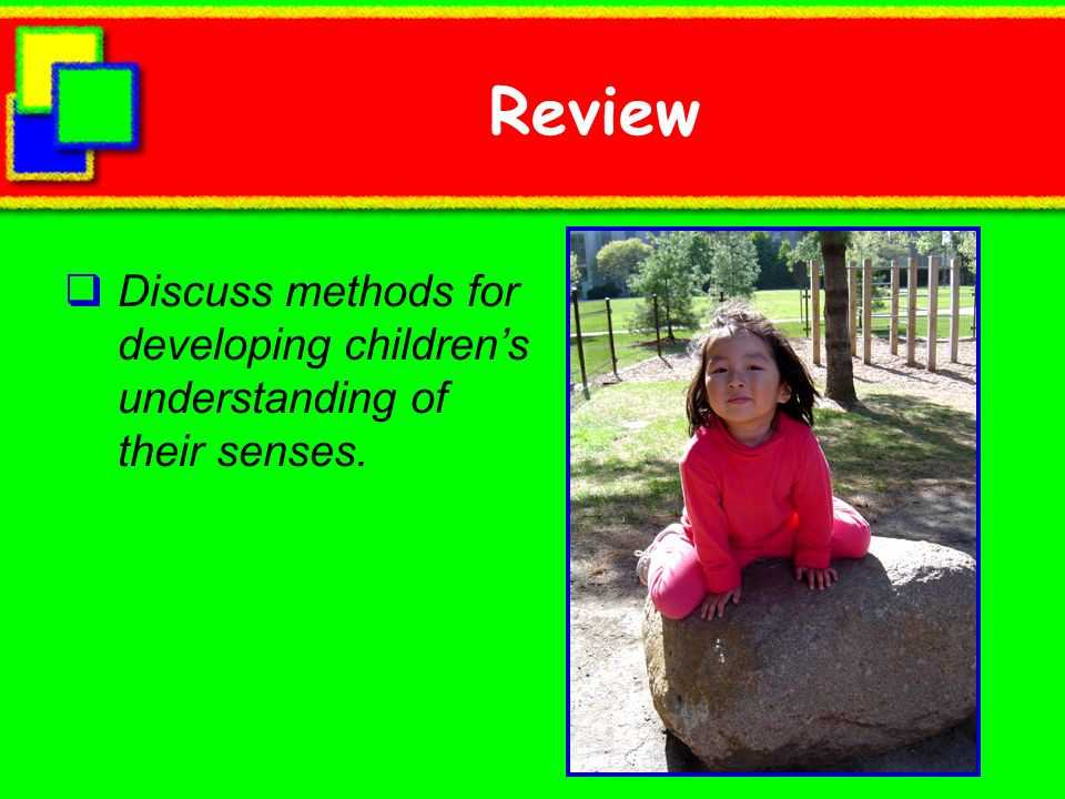 Review Discuss methods for developing children's understanding of their senses.