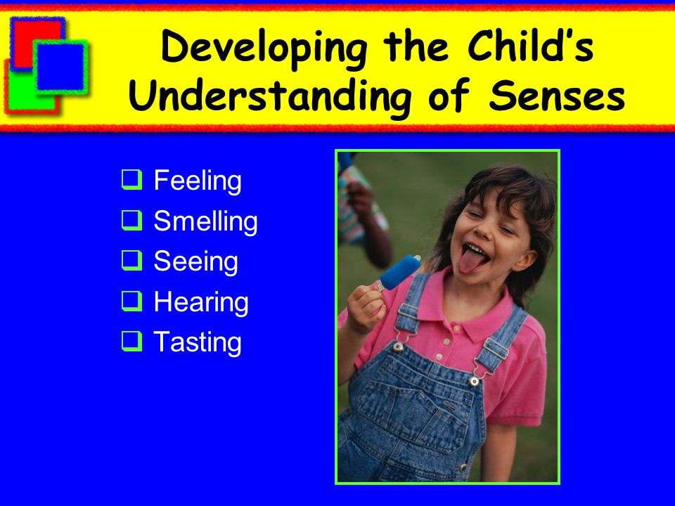 Developing the Child's Understanding of Senses