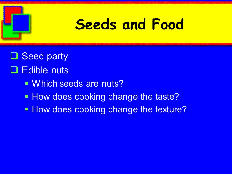 Seeds and Food Seed party Edible nuts Which seeds are nuts
