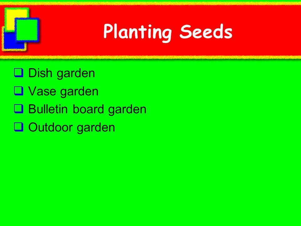 Planting Seeds Dish garden Vase garden Bulletin board garden