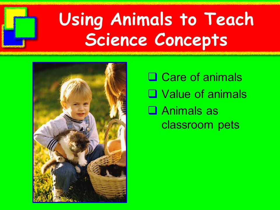 Using Animals to Teach Science Concepts