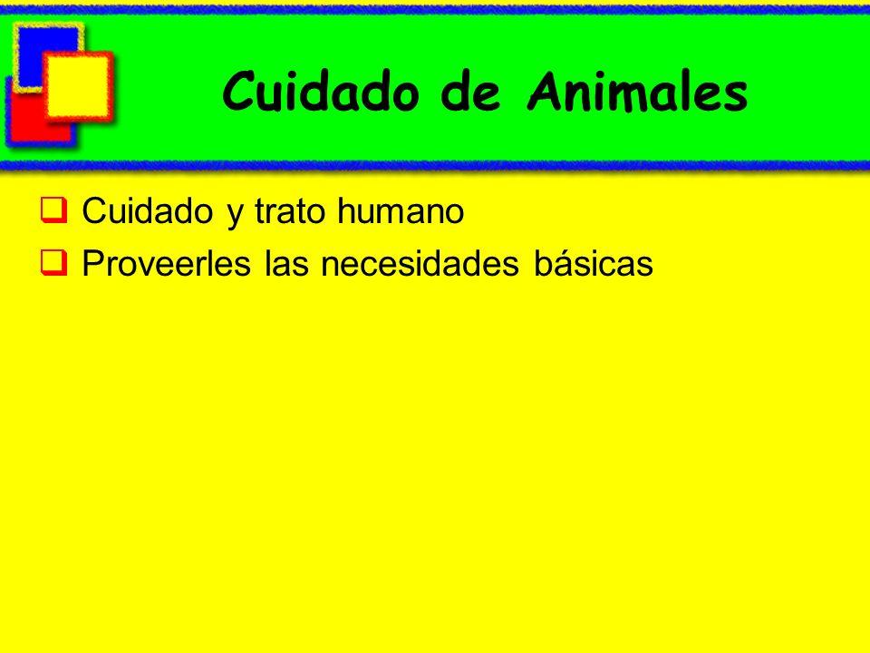 Cuidado de Animales Cuidado y trato humano