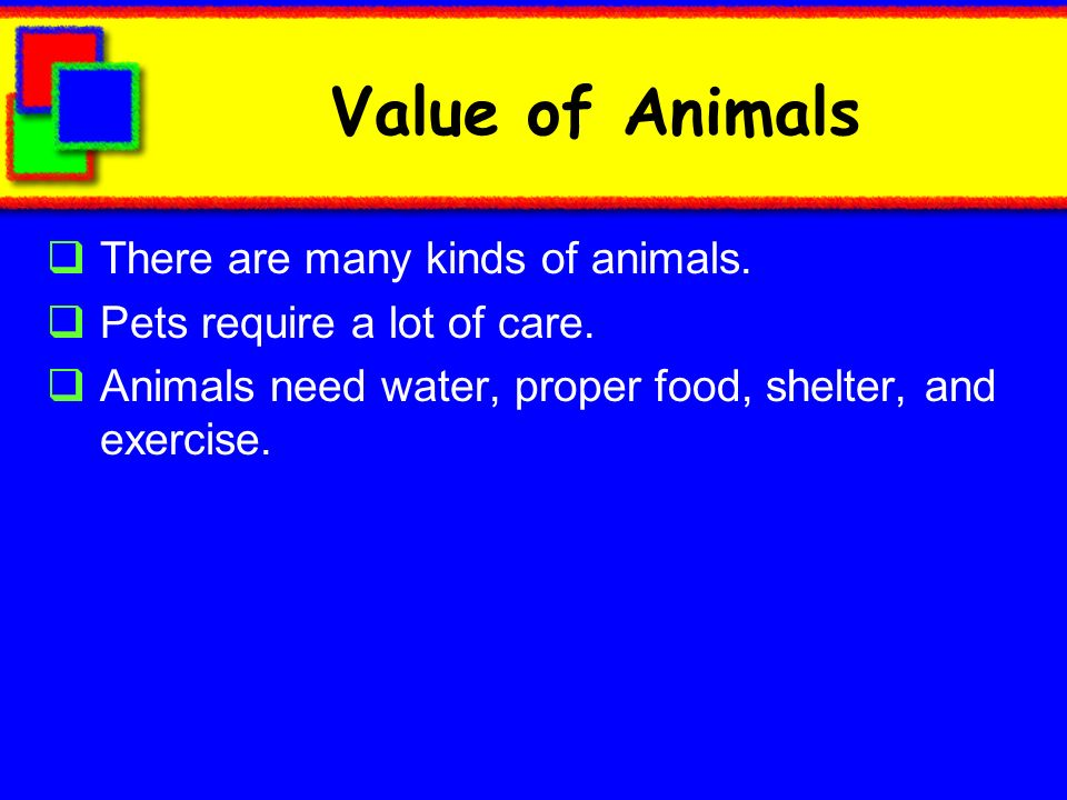 Value of Animals There are many kinds of animals.