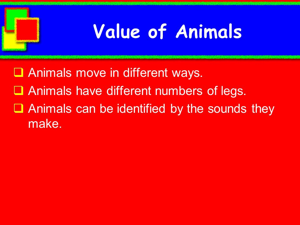 Value of Animals Animals move in different ways.