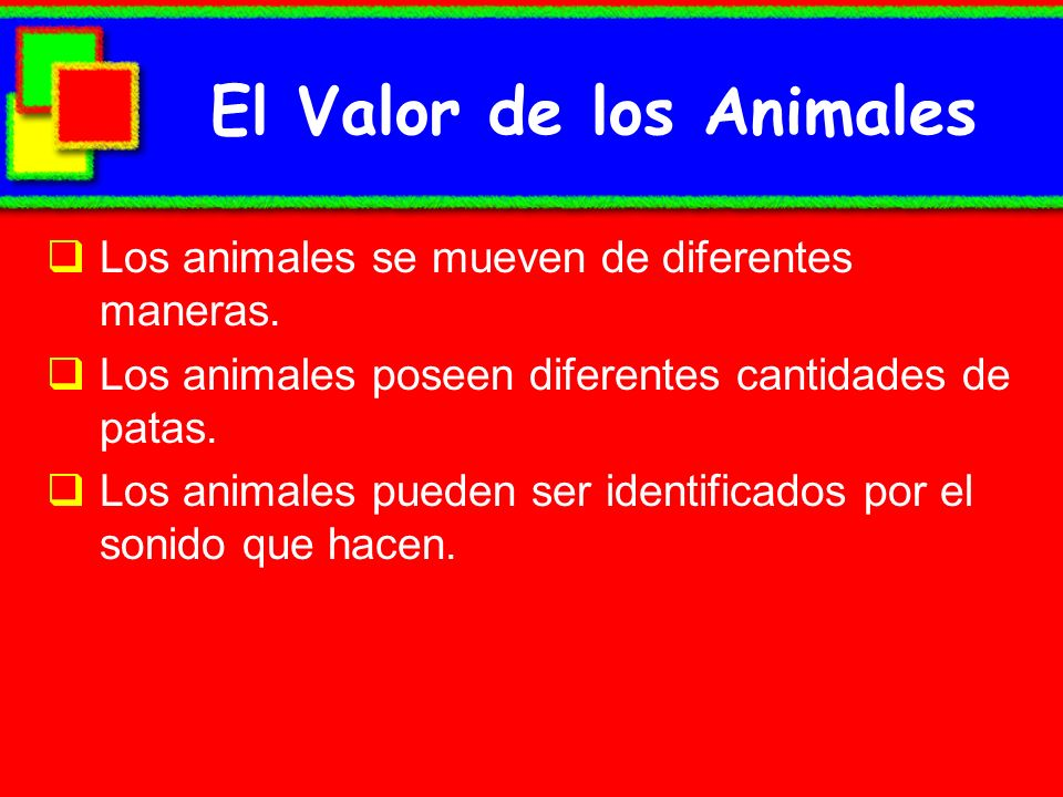 El Valor de los Animales