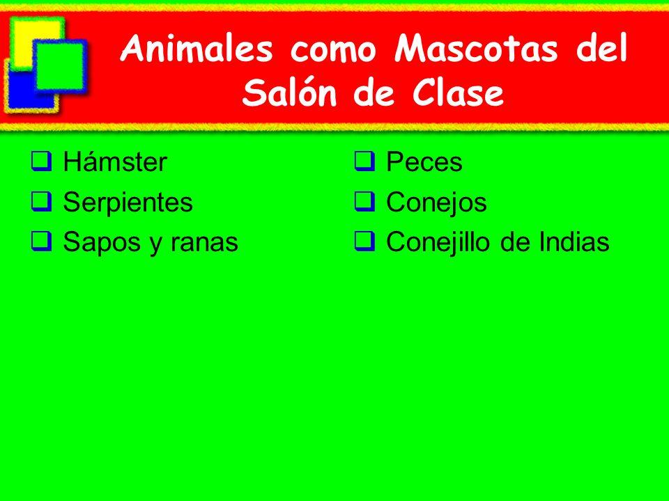 Animales como Mascotas del Salón de Clase
