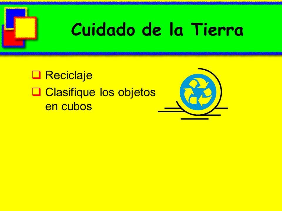 Cuidado de la Tierra Reciclaje Clasifique los objetos en cubos