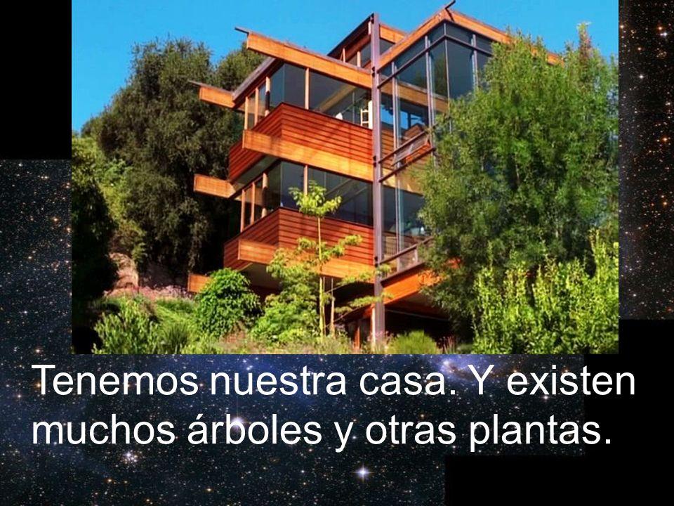 Tenemos nuestra casa. Y existen muchos árboles y otras plantas.