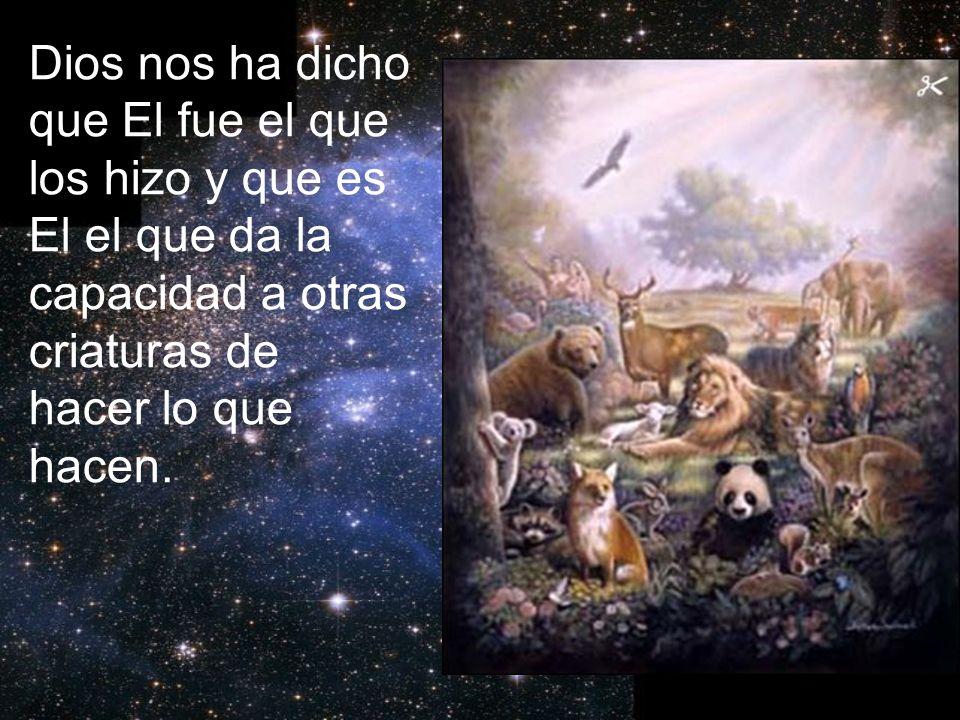 Dios nos ha dicho que El fue el que los hizo y que es El el que da la capacidad a otras criaturas de hacer lo que hacen.