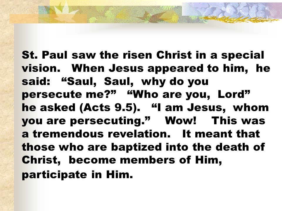 St. Paul saw the risen Christ in a special vision