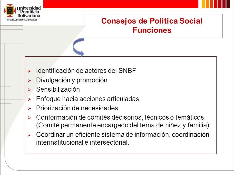 Consejos de Política Social Funciones