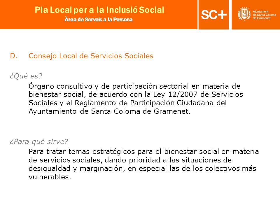 Consejo Local de Servicios Sociales