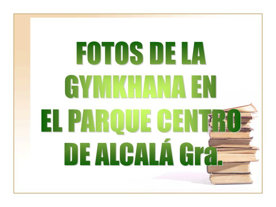 FOTOS DE LA GYMKHANA EN EL PARQUE CENTRO DE ALCALÁ Gra.
