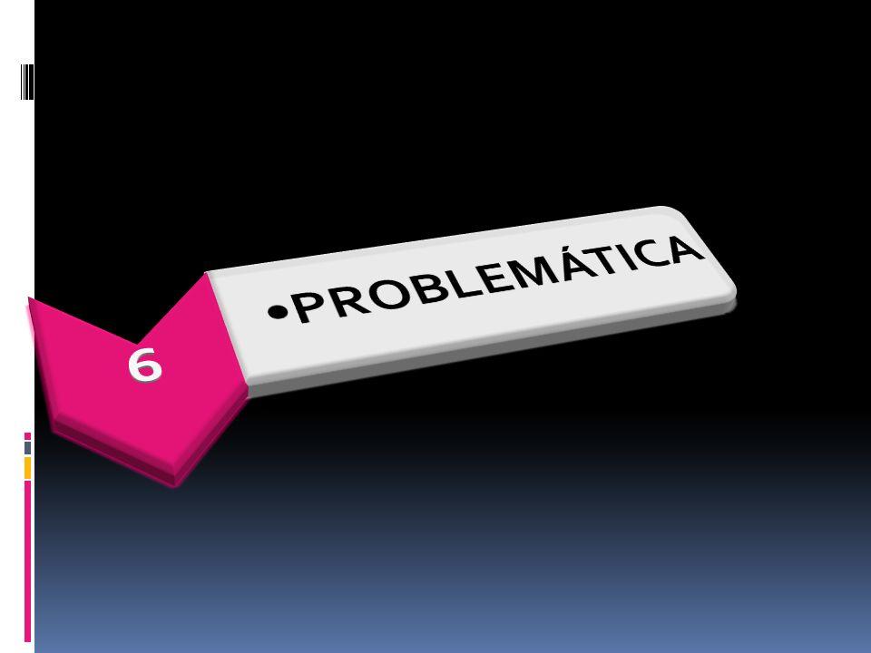 6 PROBLEMÁTICA
