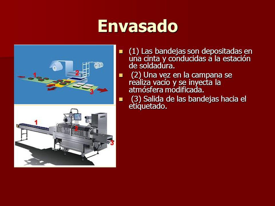 Envasado (1) Las bandejas son depositadas en una cinta y conducidas a la estación de soldadura.