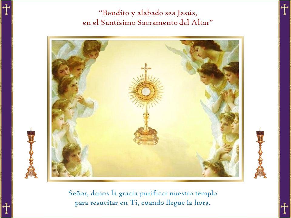 Bendito y alabado sea Jesús, en el Santísimo Sacramento del Altar
